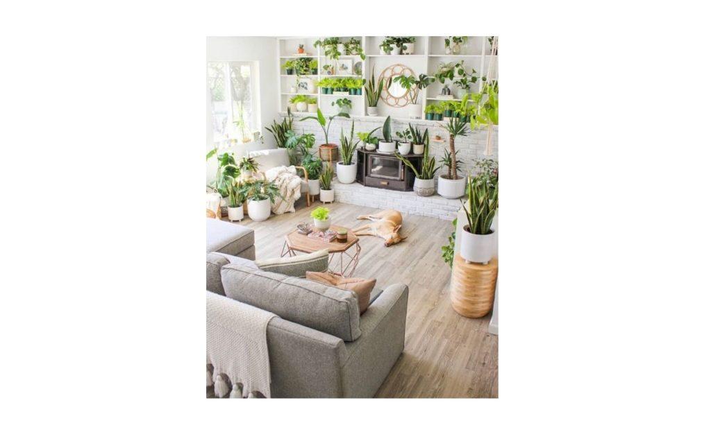 Idee Green per ogni ambiente: arredare con le piante